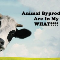 animal byproducts