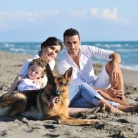 Family Ideas for Wellness Wednesday